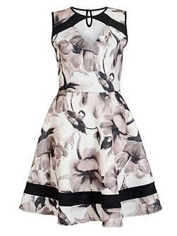 Cream and Black Floral Skater Dress