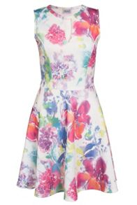 Quiz White And Pink Flower Print Skater Dress
