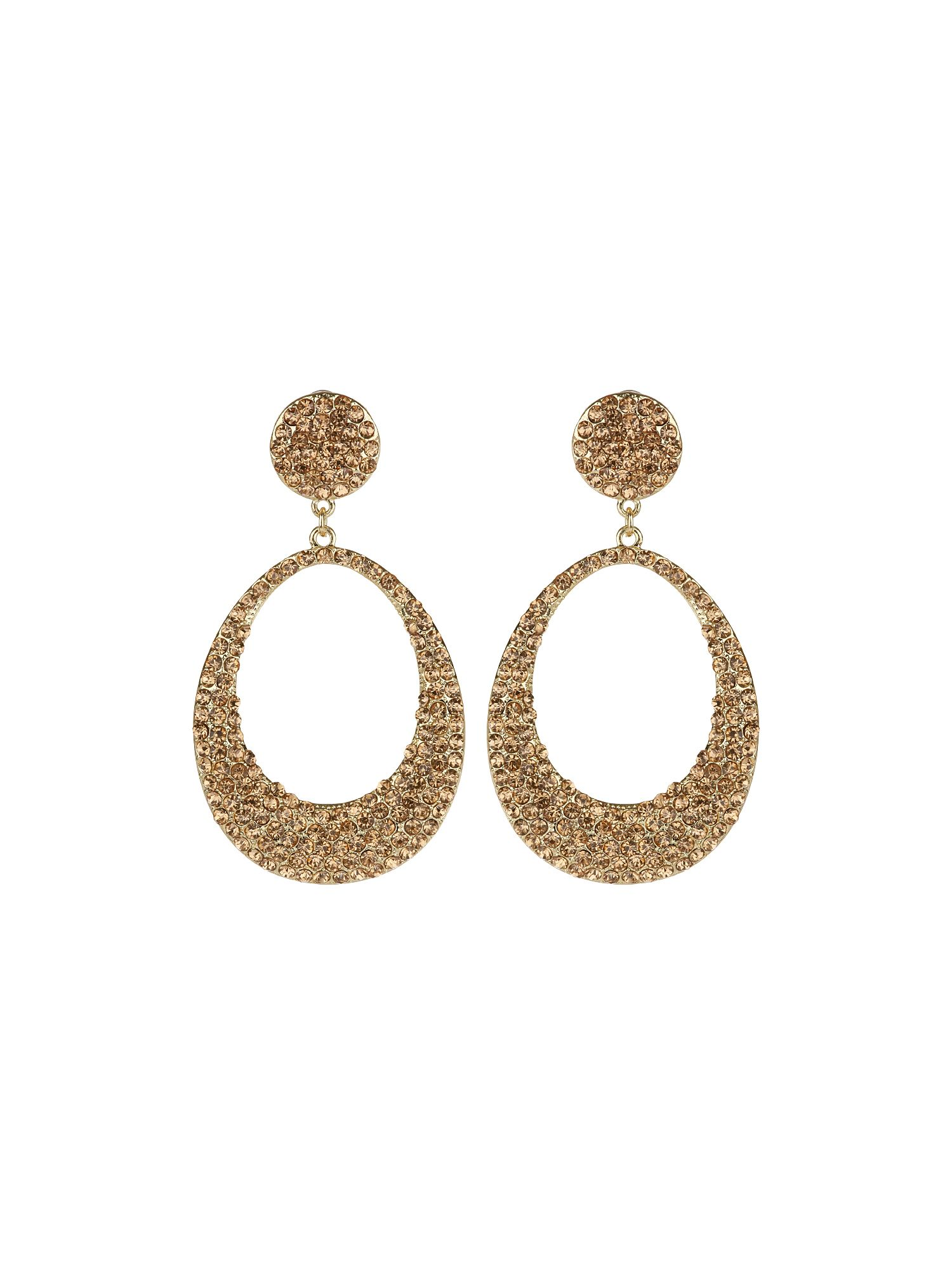 Oval Design Earring