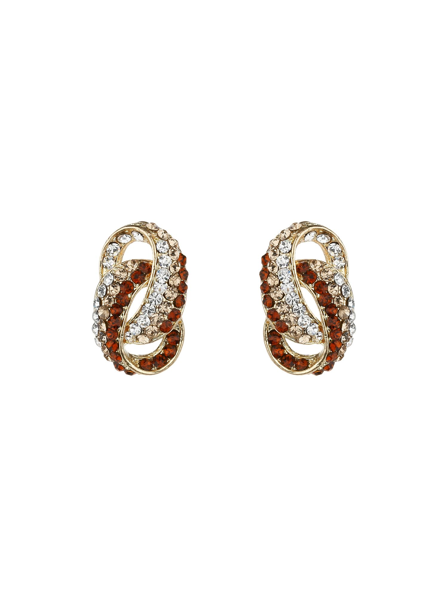 D loop earrings