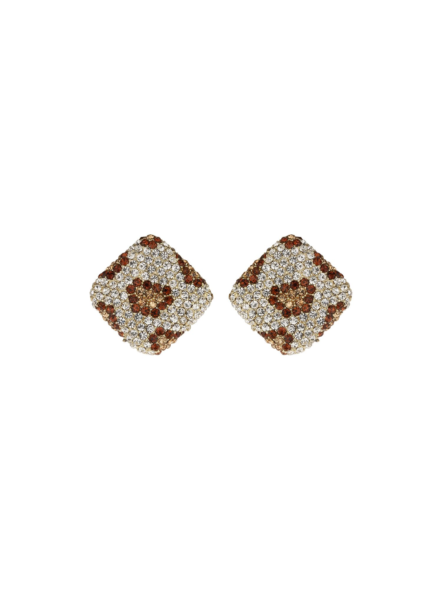 Animal square crystal earrings