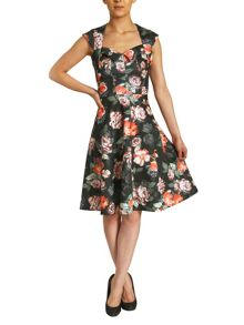 Rose Print Scuba Flared Dress