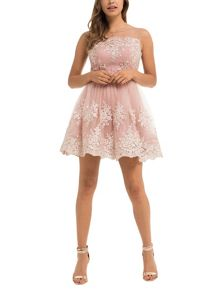 Chi Chi London Embroidered Mini Dress
