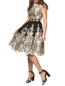 Chi Chi London Metallic embroidered tea dress