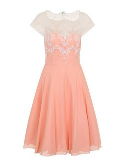 Embroidered Bodice Prom Dress