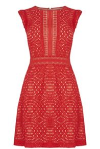 Oasis Geo Patched Lace Dress