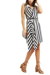 Oasis Stripe Cowl Belted Dress