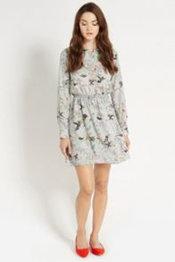 Climbing bird shadow dress