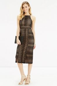 Oasis Lace Pencil Dress