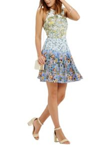 Oasis Ombre Ditsy Skater Dress