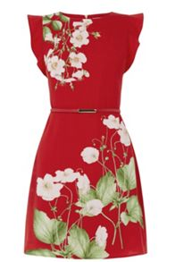 Oasis Chelsea Border Dress