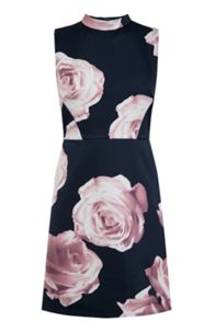 Oasis Rose Print Shift Dress