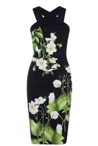 Oasis Dove House Pencil Dress