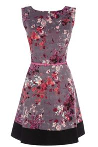 Painterly Floral Skater Dress