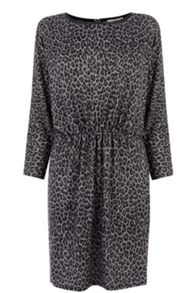 Animal Tunic Dress