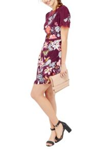 Oasis Botany Lace Dress
