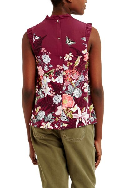 Oasis Botany Top