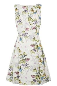 Posey Print Jacquard Dress