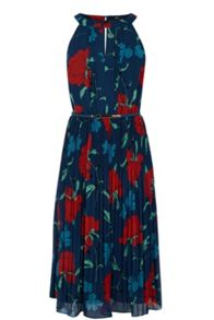 Stylised Botanical Pleated Dress