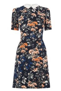 Oasis Floral Collar Shift