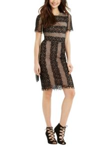 Oasis Stripe Lace Dress