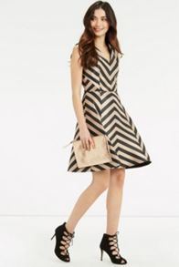 Oasis Stripe Fit And Flare Dress