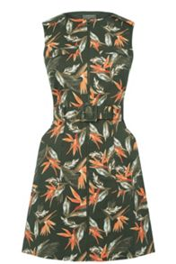 Oasis Palm Safari Dress