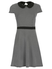 A-Line Rounded Collar Dress