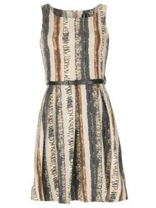 Abstract Vertical Stripe Skater Dress