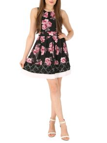 Winter Rose Fit and Flare Dress