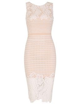 Fitted Midi Dress with Floral Lace Overlay