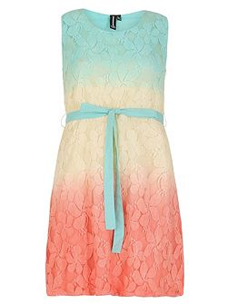 Lace Fit and Flare Ombre Dress