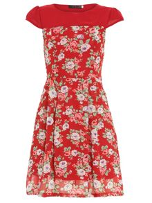 Cap Sleeve Rose Print Dress