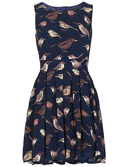 Sleeveless Bird Print Skater Dress