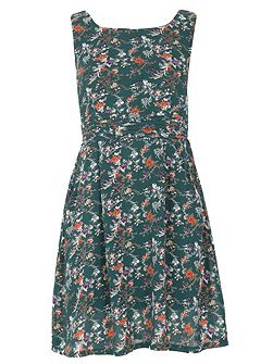 Sleeveless Floral Print Skater Dress
