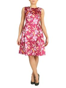 Jolie Moi Fit And Flare Printed Satin Dress