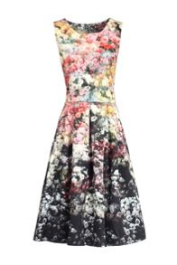 Jolie Moi Floral Print 50S Fit & Flare Dress