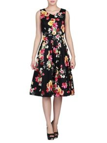 Floral Print 50S Fit & Flare Dress