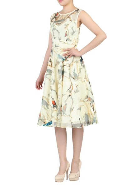 Jolie Moi Lace Printed Fit & Flare Dress