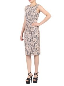Jolie Moi Contrast Lace Bonded Shift Dress