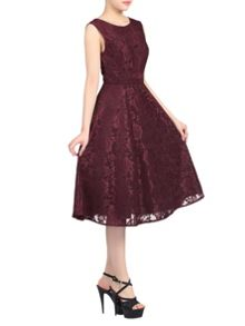 Jolie Moi Lace Bonded Fit & Flare Dress
