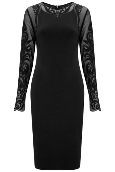 Havren Paige Lace Sleeve Dress
