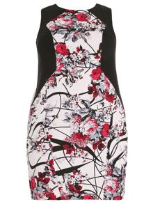 Plus Size Graphic Floral Print Dress
