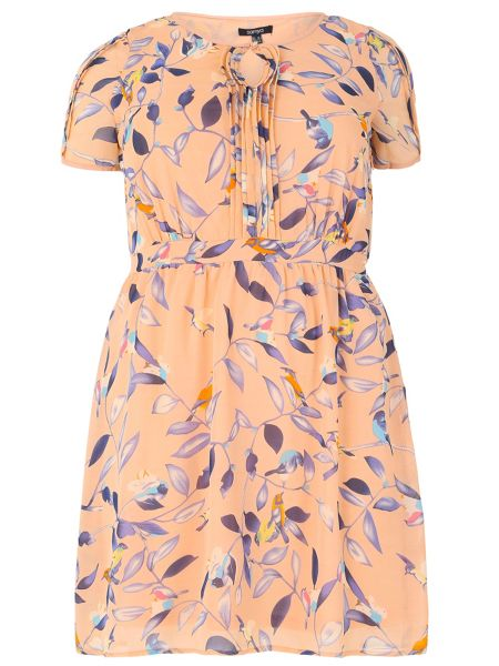Samya Plus Size Botanical Bird Print Dress