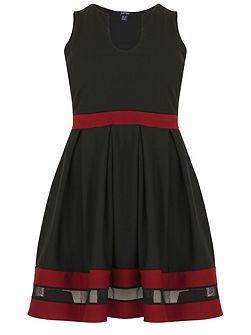 Plus Size Feature Trim Skater Dress