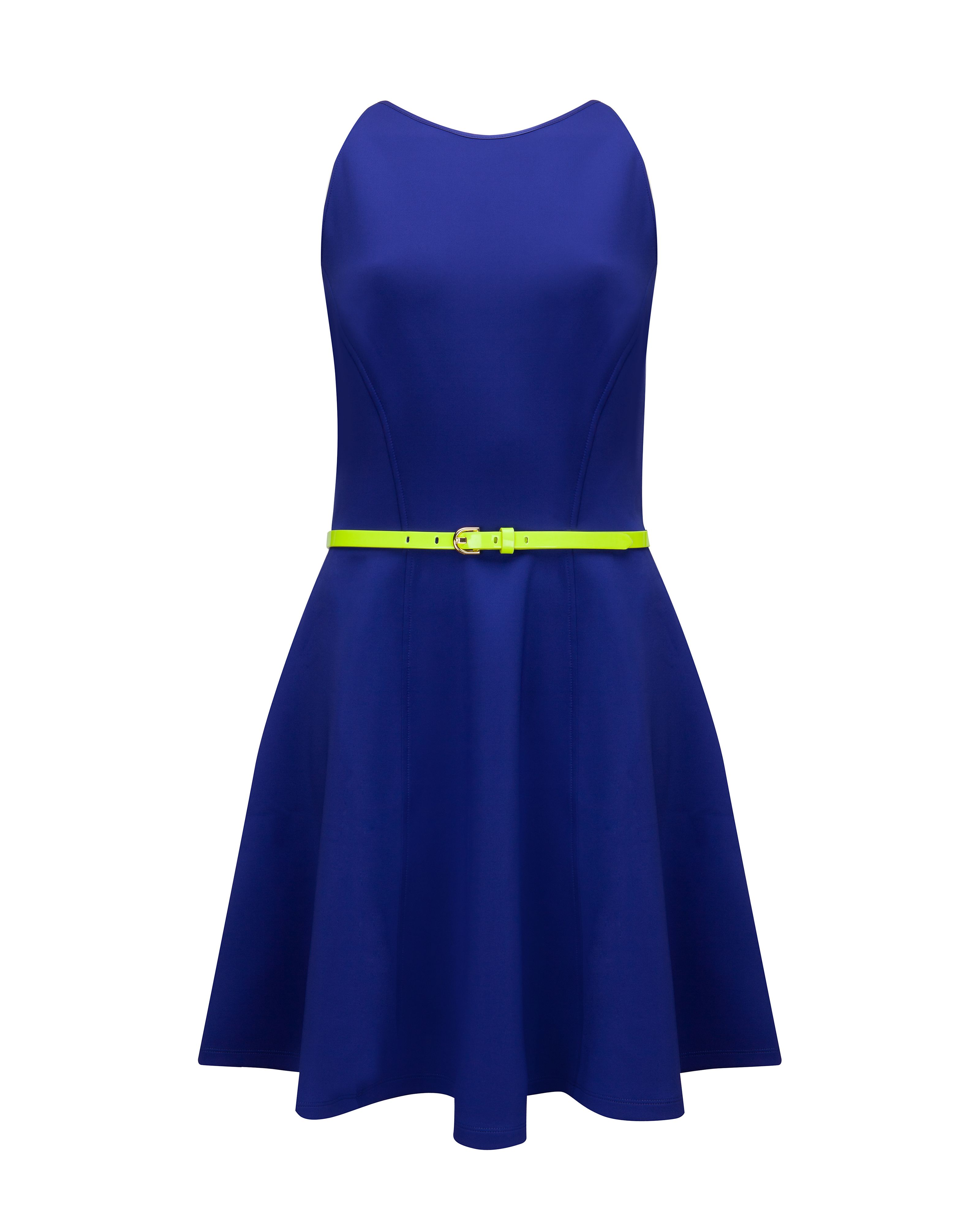 Preeny full skirted dress