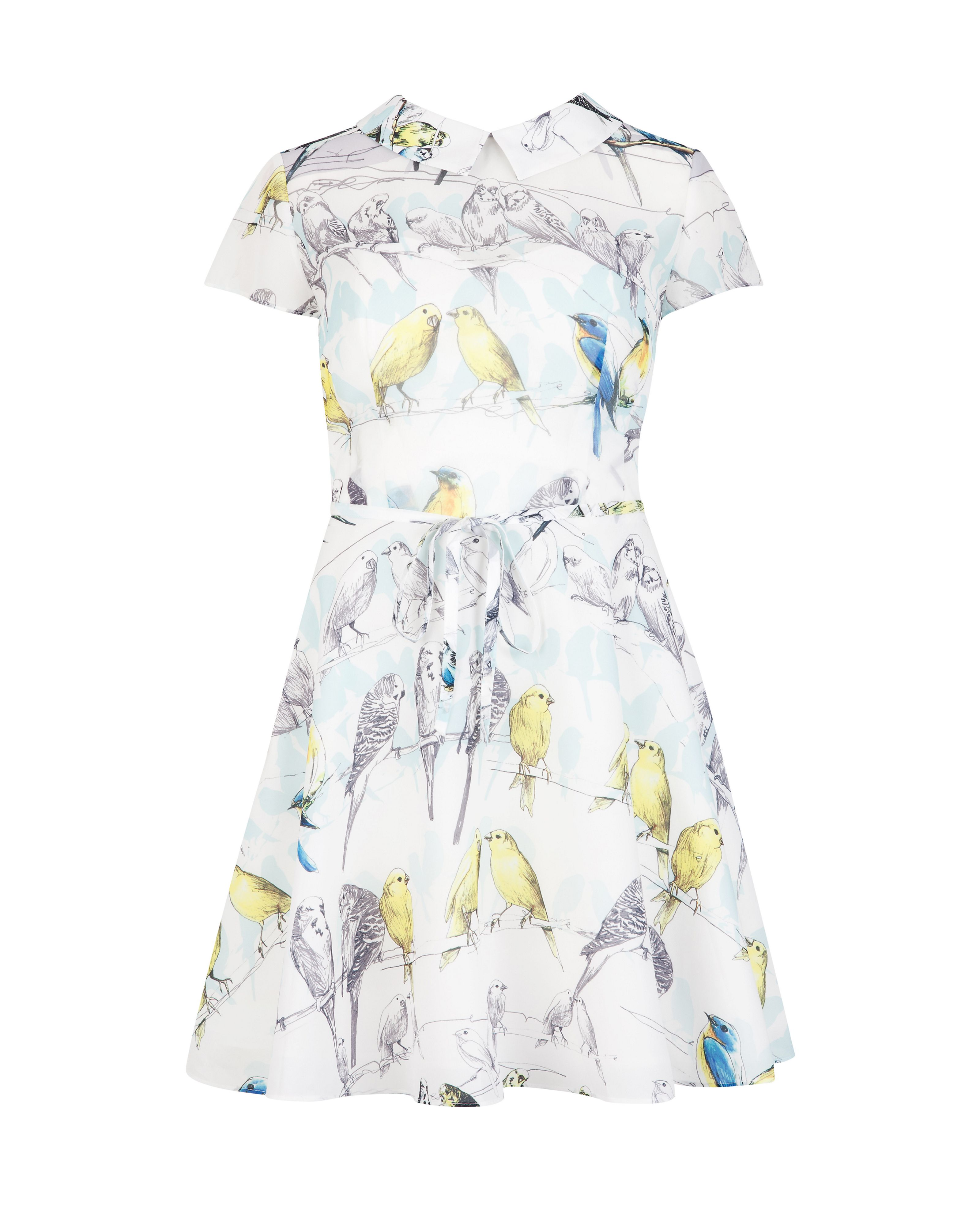 Burddy canary print dress