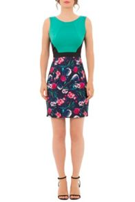 Wolf & Whistle Bird Floral Colour Block Dress