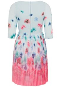 Wolf & Whistle Faded Floral Pleated Dress