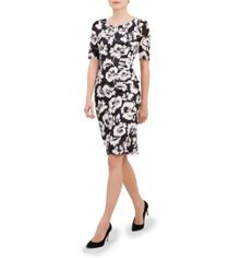 Hobbs Avery Rose Dress